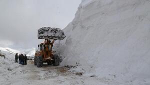 Gümüşhanede köy yollarında seçim öncesi karla mücadele
