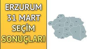 Erzurum ve ilçelerinin seçim sonuçları grafiklerle Hurriyet.com.trde