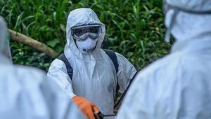 Ebola virüsü nedir Ebola nasıl anlaşılır
