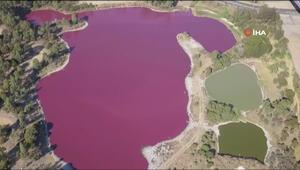 Avustralyada pembe göl