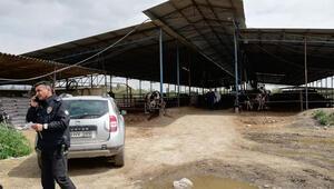 Korkunç olay Çiftlikteki gübrelerin içinde çocuk cesedi bulundu