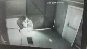 Toz şekerden otomobil lastiğine ne bulursa çalan çete yakalandı