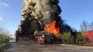 Alabalık tesisi yangında kullanılmaz hale geldi