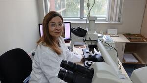 Kanserin DNAdaki parmak izini arıyorlar