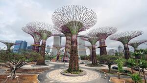 Singapurun masal diyarı botanik bahçeleri