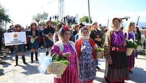 Milasın otları festival ile tanıtıldı
