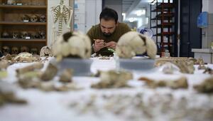 Anadolunun gizli DNA hazinesini bulacak ilk laboratuvar