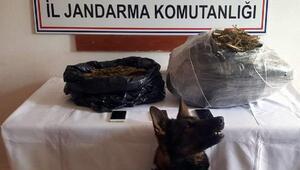 Siirtte 10 kilo esrara 3 tutuklama
