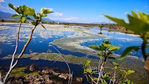 Hataydaki volkanik göl turizme kazandırılacak