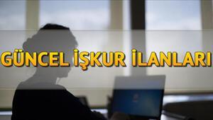 İŞKUR 158 kamu personeli alacak | Güncel İŞKUR ilanları