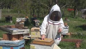 Adli tıpta kimyager olacaktı, arı ürünlerinden krem yapıyor