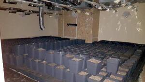 Evi sistem kurup, uyuşturucu imalathanesine çevirmişler