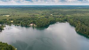 Büyülü ormanların sessiz dili: Schorfheide