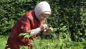 Emine Erdoğan, Nezahat Gökyiğit Botanik Bahçesini ziyaret etti