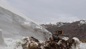 Başkalede Mayıs ayında kar temizliği