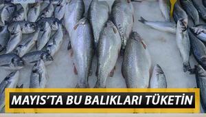 Mayısta yenilmesi gereken balıklar neler Mayıs ayında hangi balıklar yenir