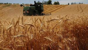 Tarım Kredi üreticinin yanında