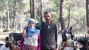 32 yıldır ormanda yaşıyorlar Burada çok temiz hava var, sabit bir yerimiz yok