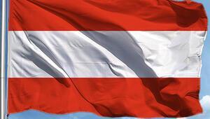 Avusturyada geçici hükümet yemin ederek göreve başladı