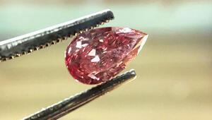 Kansız elmas