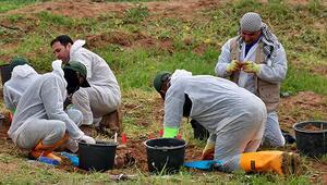 BM Irakta 12 toplu mezar ortaya çıkardı