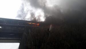 Termik santralde çıkan yangın korkuttu