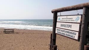 Mersinde tartışılan festival ertelendi