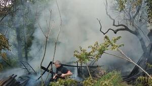 Barakada çıkan yangında mahsur kalan köpek öldü