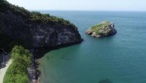 Karadenizdeki Hoynat Adası, kuşların yaşam alanı