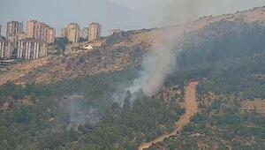 İzmirde ormanda çıkan yangın söndürüldü, yakan aranıyor