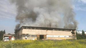 Uşakta Kilim ve battaniye fabrikasında yangın