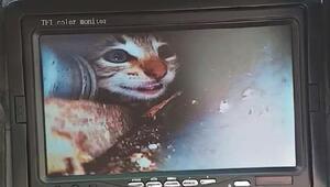Su borusuna sıkışan yavru kedi, yeri kamerayla belirlenip, kurtarıldı