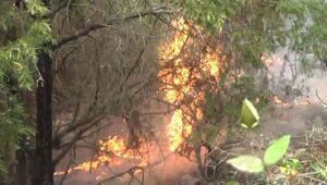 Çanakkalede yıldırım düştü; 2 hektar alan yandı
