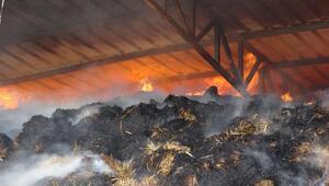 Hayvanları için depoladığı ot yandı, bayramı zehir oldu