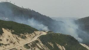 Suriye sınırında orman yangını