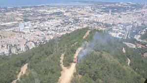 İzmirde çıkan orman yangınında 1 dönümlük alan zarar gördü
