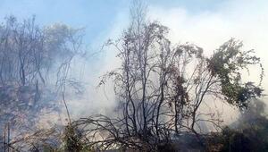 Tarım alanındaki yangın korkuttu