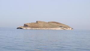 Atatürk Adası'na büyük ilgi