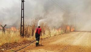 Suriye'de çıkan yangın Türkiye'ye sıçradı
