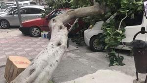 Amasyada kuvvetli rüzgar çatıları uçurdu