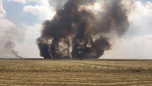 Kamışlıdaki tarlalarda yangın, Türkiyede önlem