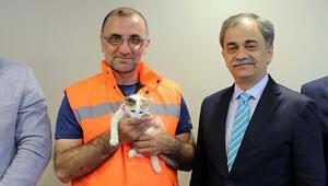 Yavru kediyi kurtaran o işçiye ödül