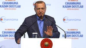 Cumhurbaşkanı Erdoğandan sert tepki: Devletin valisine 'it' diyor... Bu nasıl kucaklama