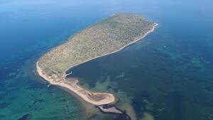 Balıkesirdeki bu ada satılık İşte fiyatı...
