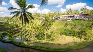 Tanrılar Adası Bali