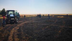 Derikte 50 dönümlük ekili buğday, küle döndü