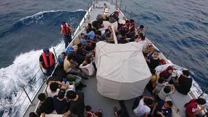 Muğlada, 114 kaçak göçmen yakalandı