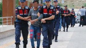 Ankara'da büyükbaş hayvan hırsızlığına 5 tutuklama