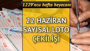 MPİ 22 Haziran Sayısal Loto çekilişleri tamamlandı | Sayısal Loto sonuç sorgulama ekranı