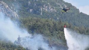 Bornovada ormanlık alanda iki ayrı bölgede yangın
